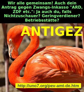 img ANTIGEZ
